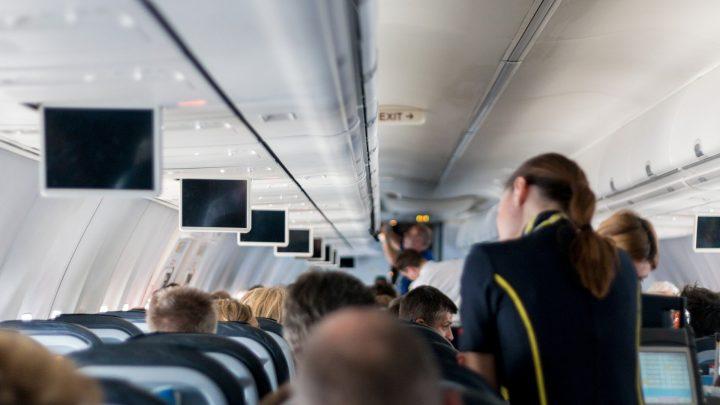 Come diventare assistente di volo: prerequisiti, compiti, percorso formativo. Quanto guadagna un assitente di volo?