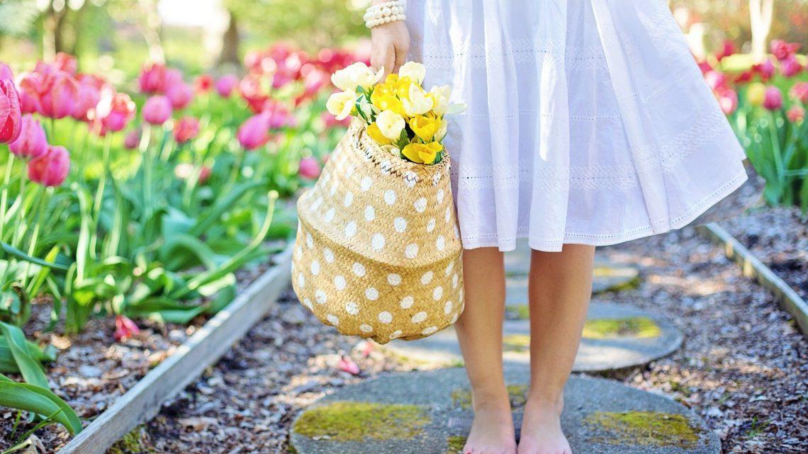 Come diventare giardiniere: requisiti, percorso formativo, guadagni e come aprire un'impresa di giardinaggio